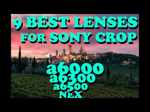 9 Best Lenses for Sony Crop a6000, a6500, NEX