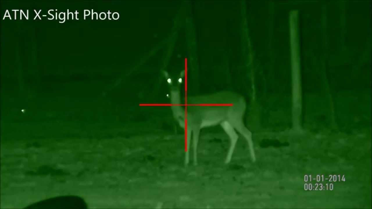 Atn Corp X Sight 5 18x Digital Night Vision Rifle Scope Victoria Australia Deer Kangaroo Youtube