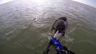 """Подводный поиск на Азове-ЗОЛОТОЙ """"БОЧЁНОК""""/HD"""