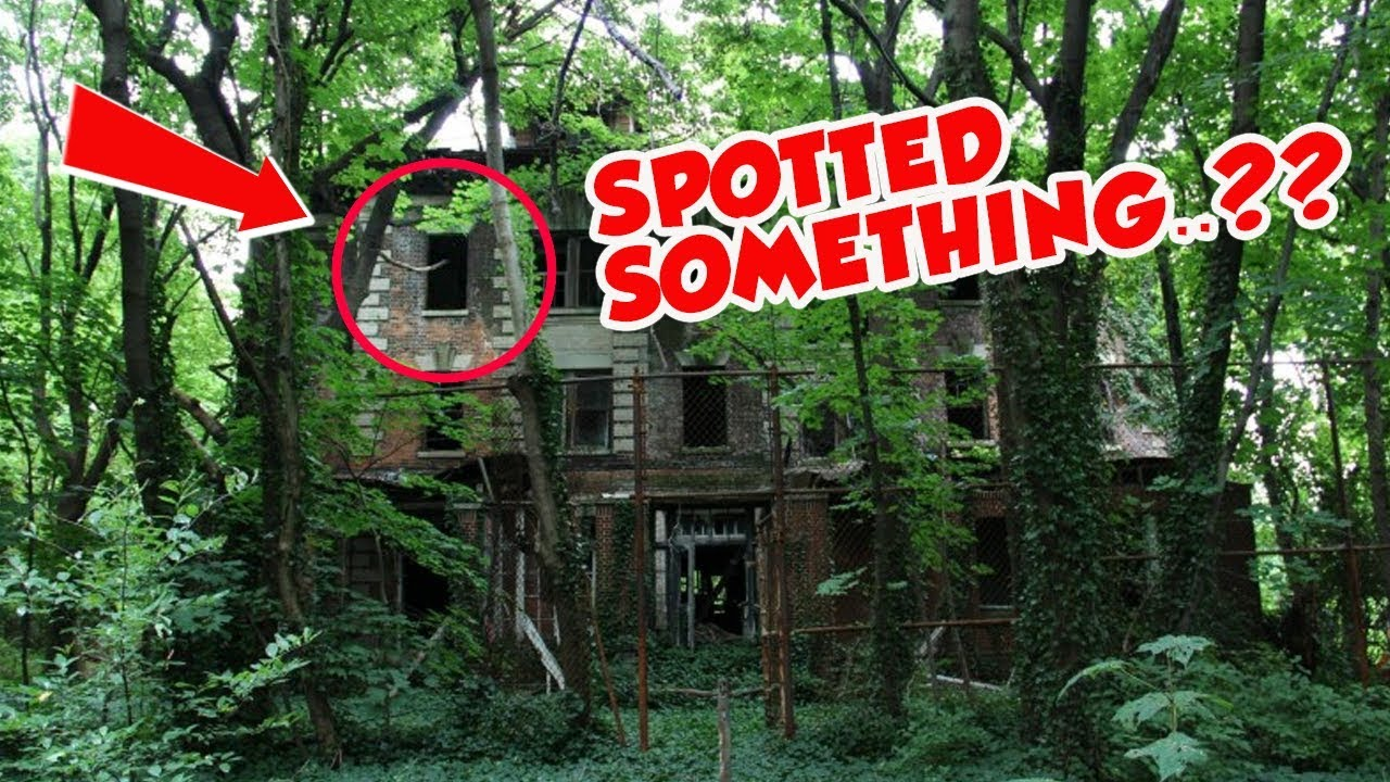 North Brother Island Pictures
