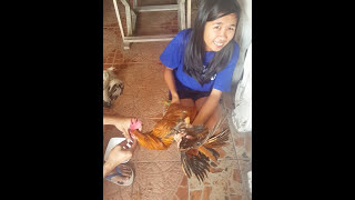 Pabebe Chicken Tutorial