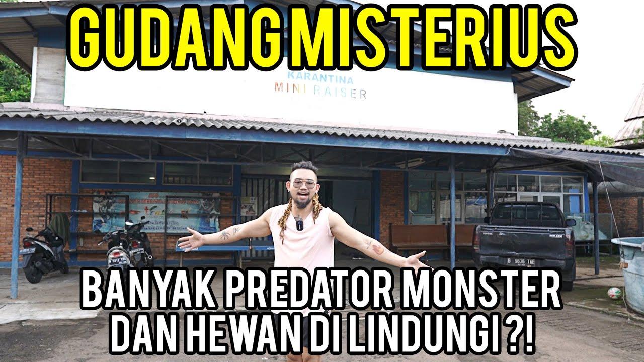 GUDANG TERBESAR DI JAKARTA YANG ISINYA RATUSAN PREDATOR MONSTER DAN HEWAN DILINDUNGI??? - KOK BISA?!