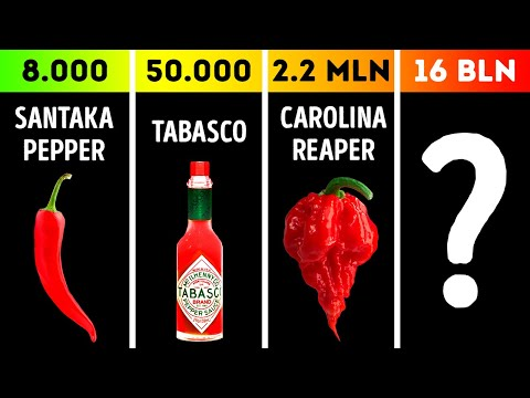 Comparison: Top Most Spicy Things Ever