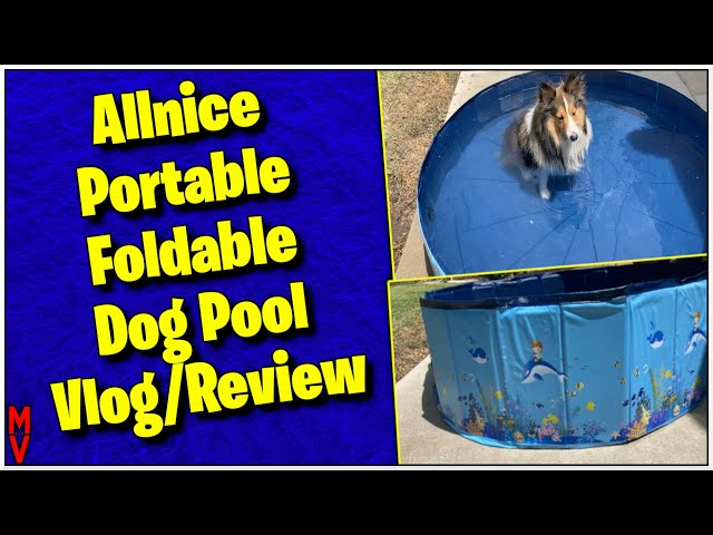 Allnice Portable Foldable Dog Pool Vlog/Review MumblesVideos || Dancer Tries His Pool