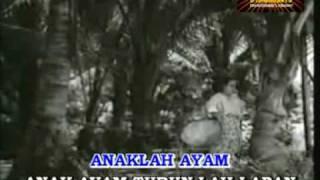"""ANAK AYAM (Karaoke) lagu klasik nyanyian dan lakonan M.Zain dari filem""""Singapura Dilanggar Todak"""""""