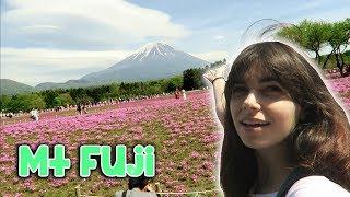 Traveling to Mount Fuji