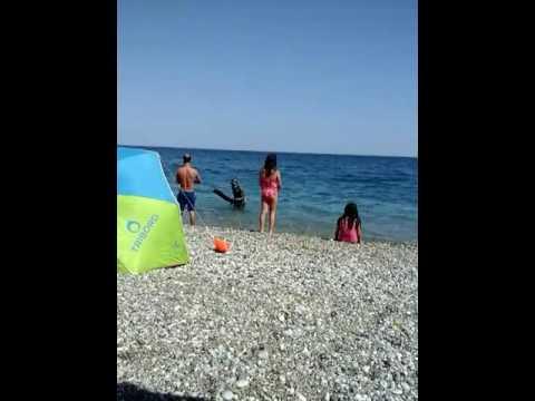 Konyaalti sahilde vatoz