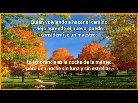 Confucio (Pensamientos - Frases)