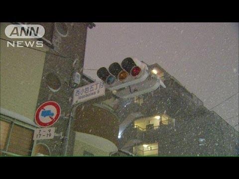 東京で45年ぶりの大雪 7万軒を超える停電も(14/02/08)