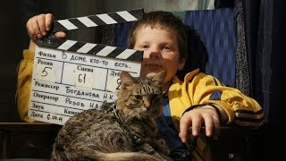 Как отбирают животных для съемок в кино