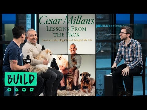 Cesar And Andre Millan Discuss Their Show, 'Dog Nation' And The Book, 'Cesar Millan's Lessons From T