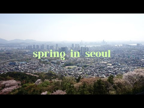 Spring in South Korea 2017 ❀ TRAVEL DIARY