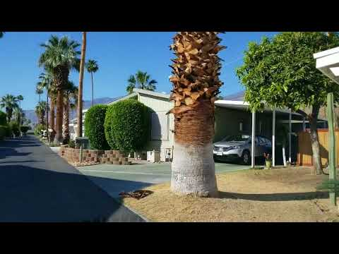 Sahara Mobile Home Park, one listing and one FSBO!