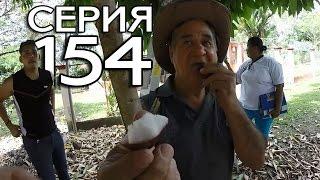 ПАНАМСКАЯ ФЕРМА В ДЖУНГЛЯХ // КРУГОСВЕТКА - СЕРИЯ 154