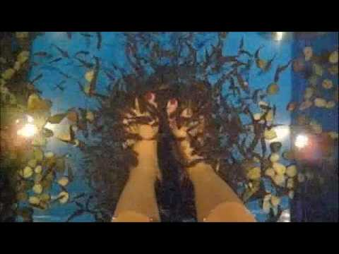 Fish Spa (Feet)