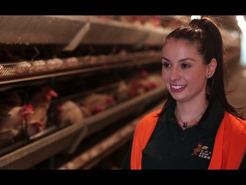 Danyel Ahmed: An Australian Cage Egg Farmer