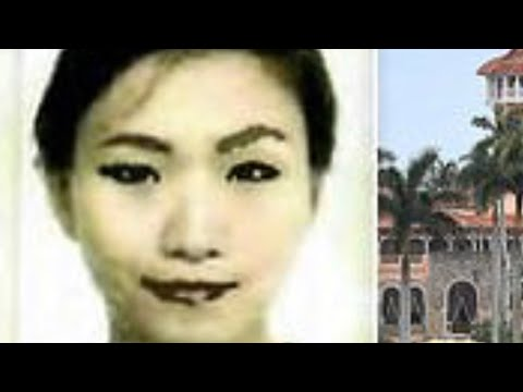 Chinese woman arrested at Mar-a-Lago had B-1 VISA good for 10 years, device to detect hidden cameras