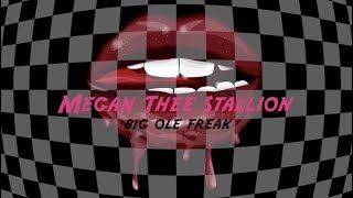 Megan Thee Stallion - Big Ole Freak [ Lyric ]