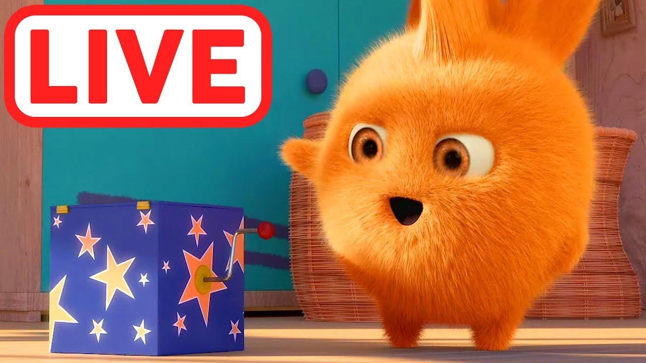 Sunny bunnies live la grande avventura cartone animato per