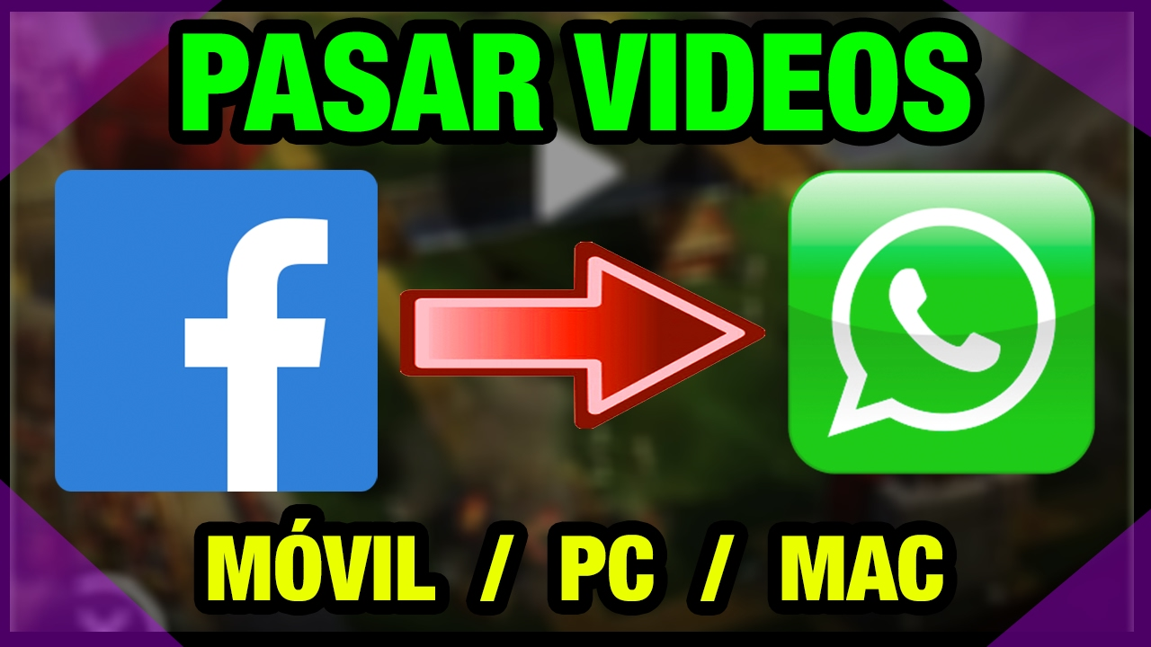 Whats App Videos
