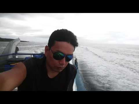 Bohol sea power