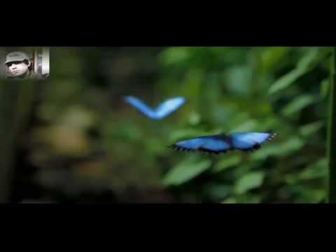George Acosta ft Fisher - True Love sub (Ingles - Español)