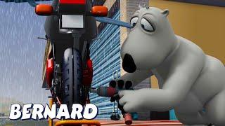 Бернар Медведь | Мотоциклетная гонка И многое другое | Мультфильмы для детей | Полные эпизоды