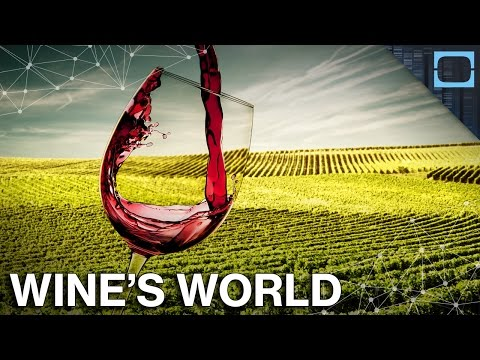 How Did Wine Become A Global Phenomenon?