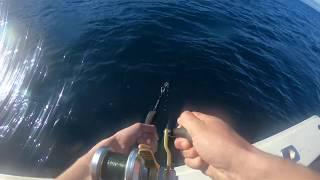 Catching Rockfish at Catalina Island.