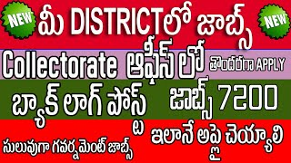 district Collectorate invites applications for Backlog vacancies    Jr Assistant   Typist    Steno  
