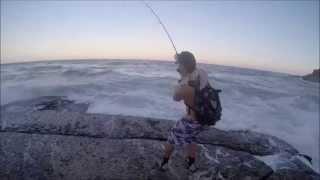 rock fishing australia (jewfish)