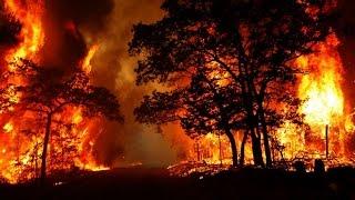 ЛЕСНОЙ ПОЖАР(Борьба с лесными пожарами. В предверии майских праздников, когда многие едут в лес на отдых, давайте максима..., 2016-04-15T20:52:22.000Z)
