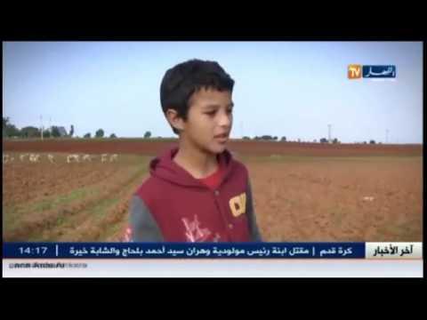 الطفل الذي حطم قلوب الجزائريين يبكي المذيعة على المباشر.. محزن جدا