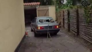 Смешные видео(2017)