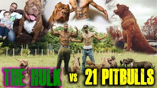 THE HULK VS. 21 PITBULLS || THE REAL TARZANN