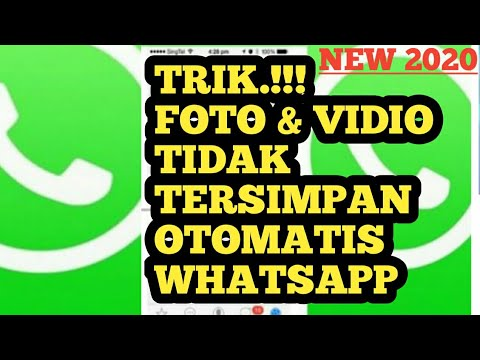 cara-agar-foto-dan-vidio-whatsapp-tidak-tersimpan-di-galeri