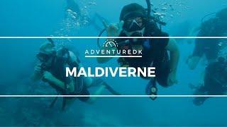 Maldiverne - Adventuredk
