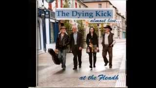 The Tennessee Waltz Instrumental ( Tin Whistle and Harmonica by The dying Kick)