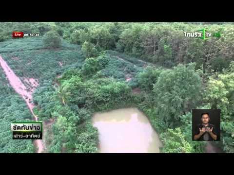 ผีบังตา!! หมอผีเมืองแพร่วิ่งเข้าป่า คนนับร้อยหา 4 วัน ยังไร้วี่แวว   ข่าวไทยรัฐออนไลน์
