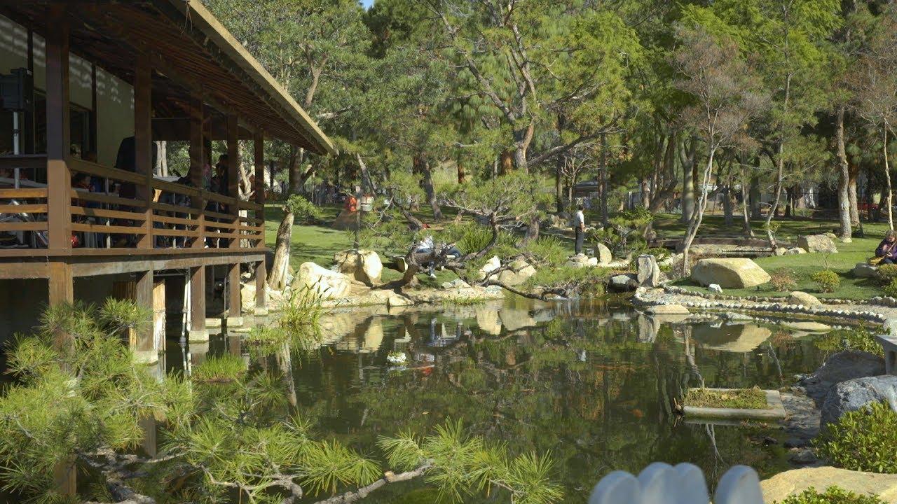 Japanese Friendship Garden Renovation - Shoseian Tea House - YouTube