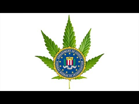 Zero Tolerance Policy Keeps Talented Stoners From FBI Jobs