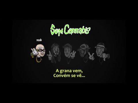 Costa Gold - Sem Cannabis  (Prod. Lotto) | (Part. Ari [ConeCrewDiretoria] & Shock [Start])