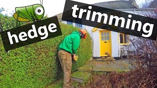 Hedge trimming and Garden Services - St Agnes