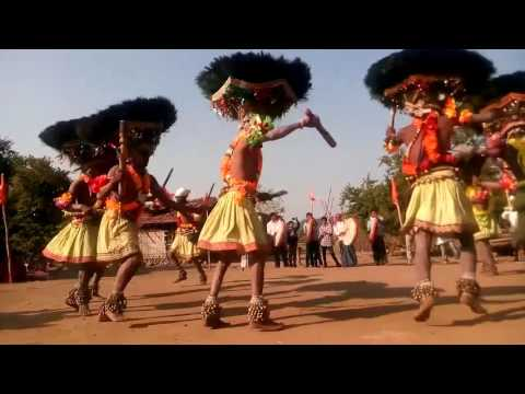 Must Watch Gonds Gussadi Dance, cultural dance lovers, traditional dance