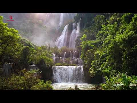 Soothing Relaxation Music With Nature Sounds - Birds & Waterfall Soundscapes
