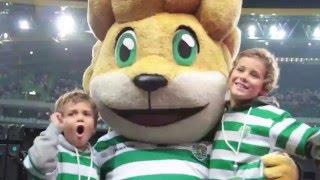 Pequenos leões, grandes rugidos!
