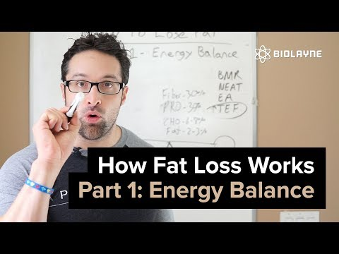 How Fat Loss Works Episode 1: Energy Balance