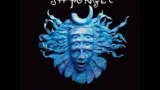 Psybient - Shpongle - DMT - Divine Moments Of Truth