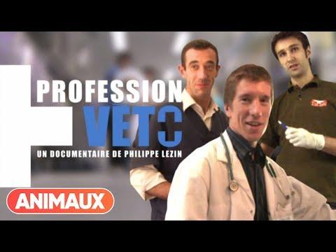 [DOCU] Profession Veto - Animaux