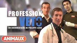 [DOCU] Profession Veto - Animaux
